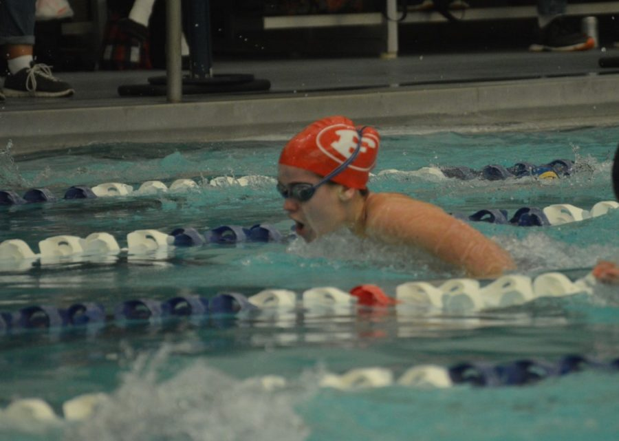 Swim splashes away the competition the campus comet - Palo alto ymca swimming pool schedule ...