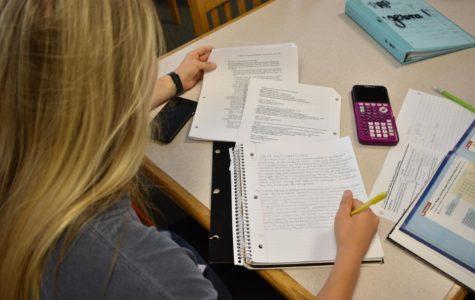 Junior Ellie Lindsay works hard to finish her homework.