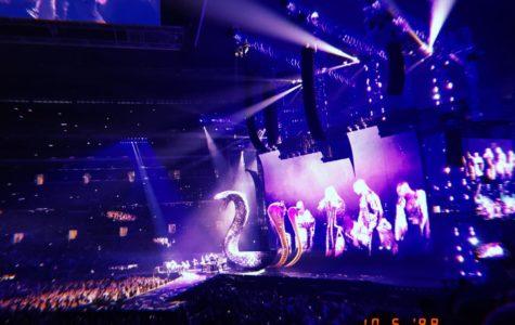Taylor Swift Reputation Stadium Tour: Most Fun I Ever Had