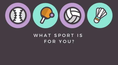 Which sport is for you?