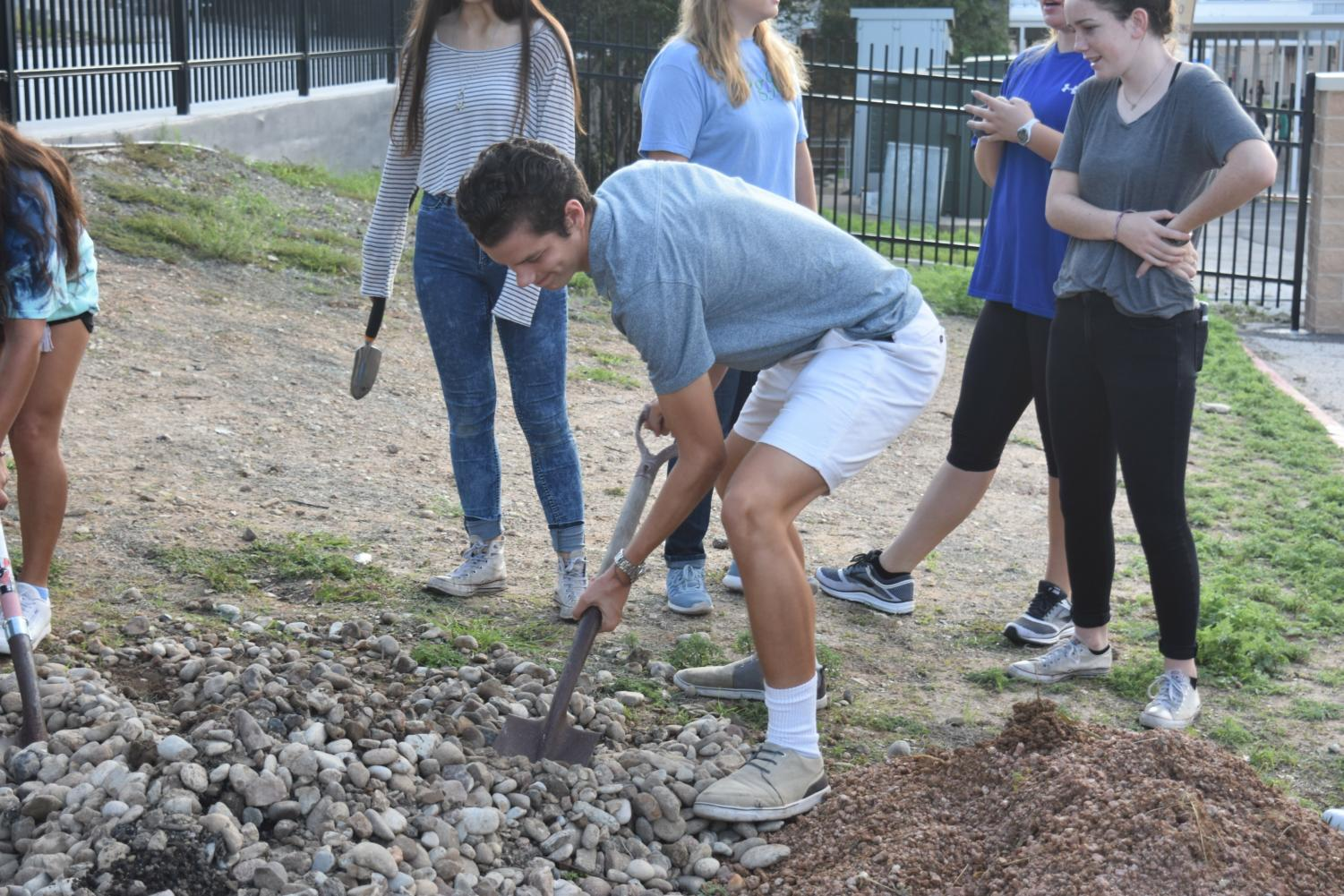 Levi Wilkins shovels rocks and tends to the FHS Memorial Garden with the Interact group.